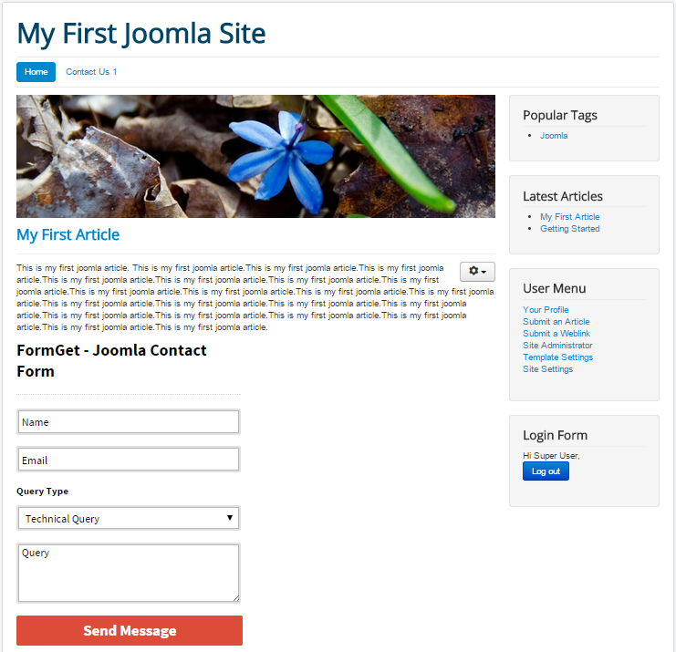joomla-plugin-plain-form-output