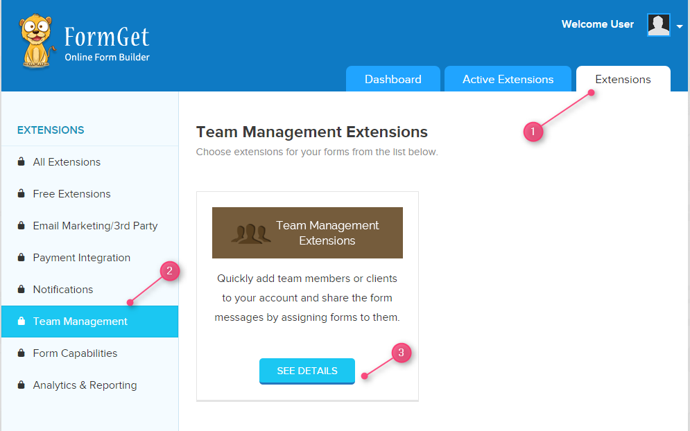 team-management-extension-section
