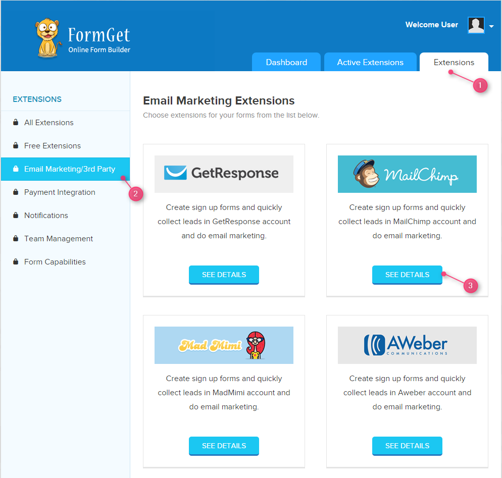 see-details-of-mailchimp-extension-formget
