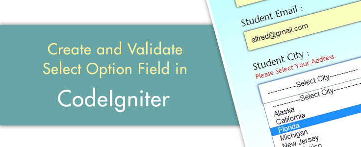 How To Create And Validate Select Option Field | FormGet