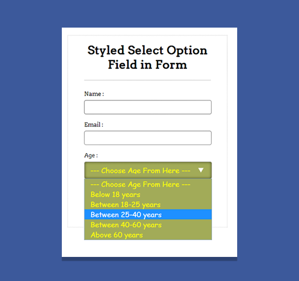 styled select option field in form