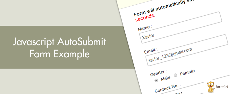 Javascript : Auto Submit Form Example