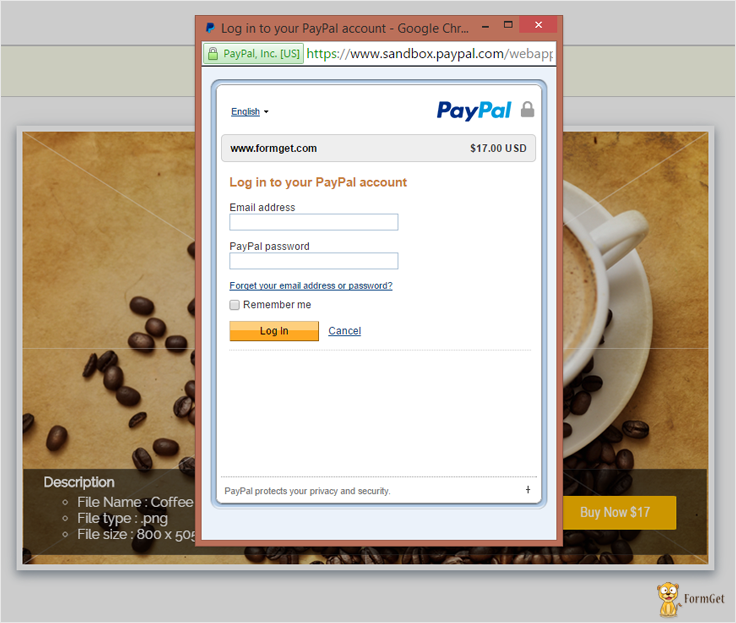paypal express checkout for digital goods login via paypal