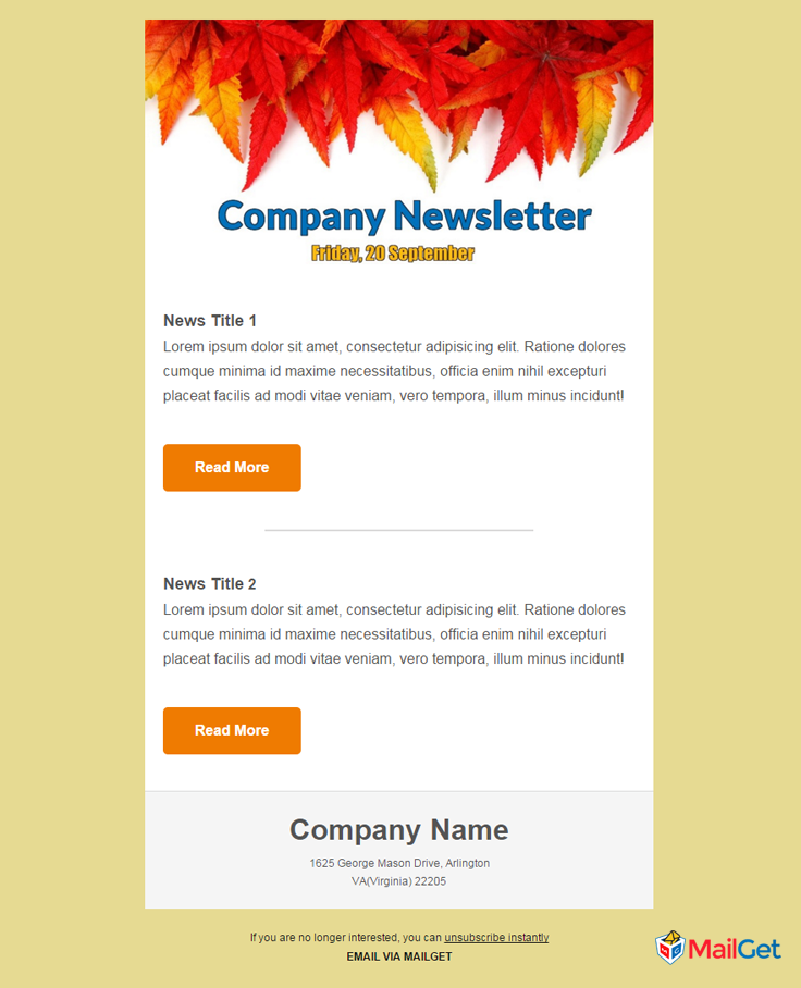 Business Email Template 2