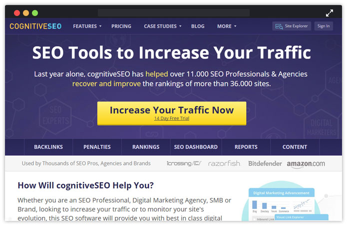 CognitiveSEO Best Seo Tools Software