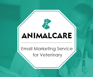 MailGet Bolt – Email Marketing for Veterinarians, Veterinary Hospitals & Veterinary Medicines