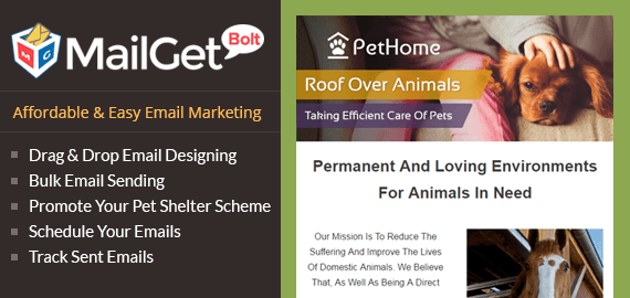 Email Marketing For Animal Shelters Slider Image