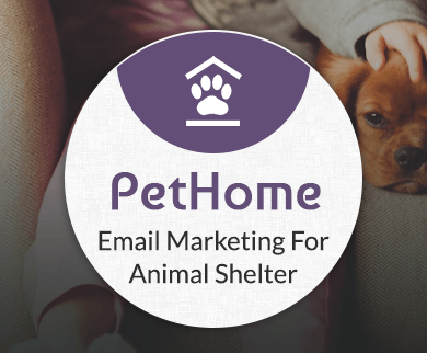 MailGet Bolt – Email Marketing For Animal Shelter Organizations & Pet Sanctuaries