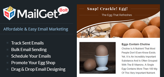 Email Marketing For Egg Shops Slider