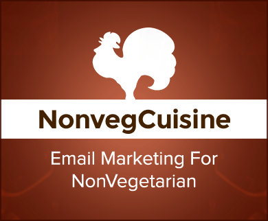 MailGet Bolt – Email Marketing For Non Vegetarians & Non-Veg Restaurants