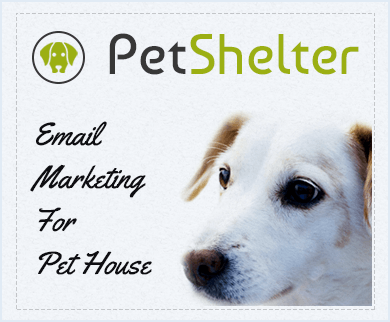 MailGet Bolt – Email Marketing Service For Pet Houses & Dog Shelters
