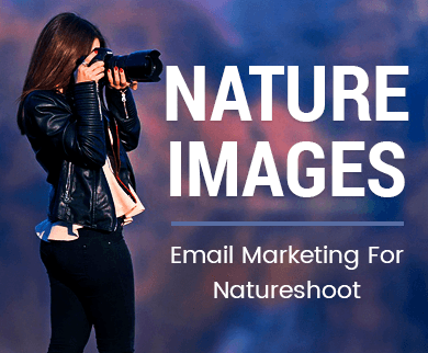 Email Marketing For Natureshoot
