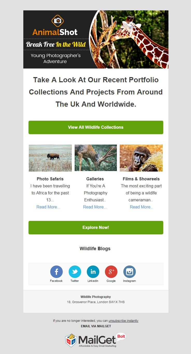 Wildlife Photographer Email Template