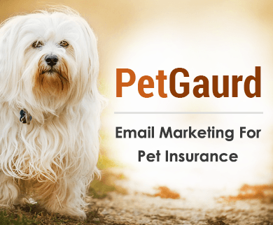 MailGet Bolt – Email Marketing Service For Pet Insurance Companies & Agencies