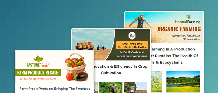 Best Agriculture Email Marketing Services