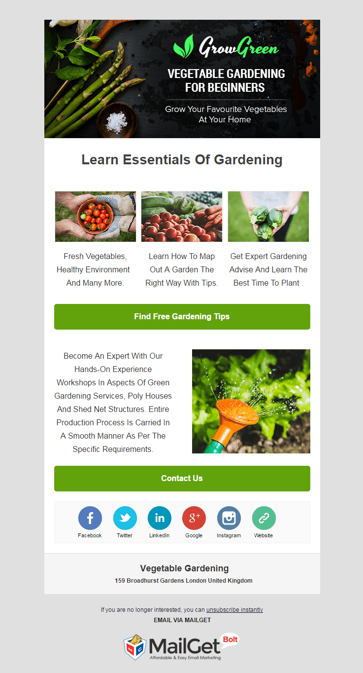 Email Marketing Service For Vegetable Gardening