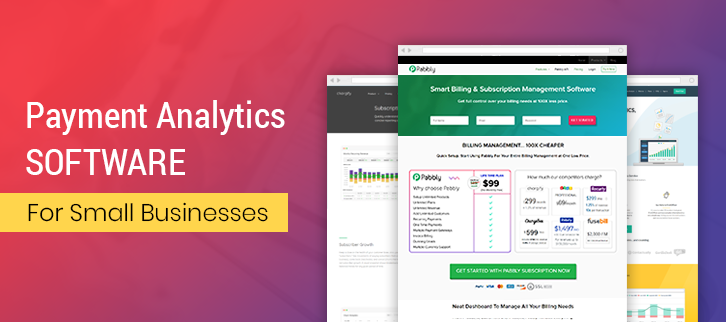 Payment Analytics Software For Small Businesses