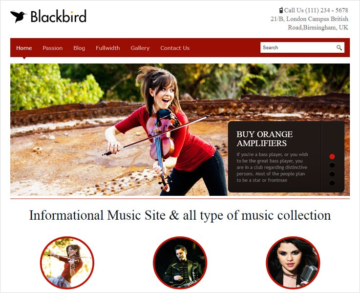 blackbird business wordpress theme