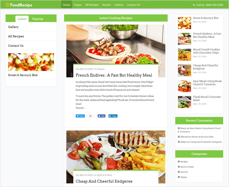 foodrecipe food wordpress theme