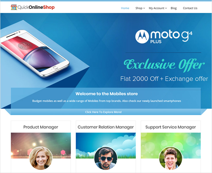 quickonlineshop wordpress theme