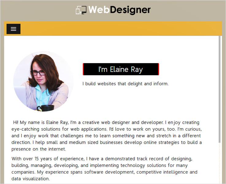 WebDesigner WordPress theme