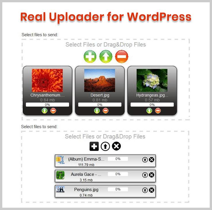 Real Uploader for WordPress - Upload file WordPress plugin