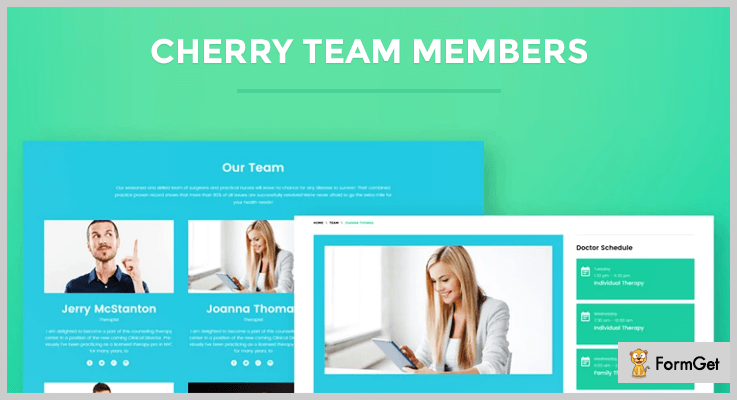 team members WordPress plugins