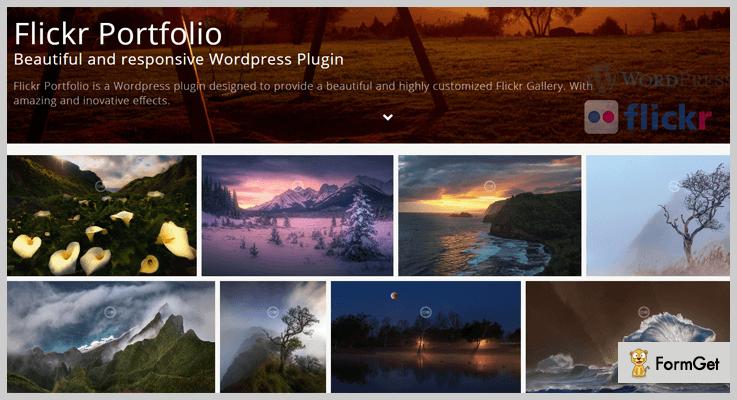 Flickr Portfolio-Portfolio WordPress Plugins
