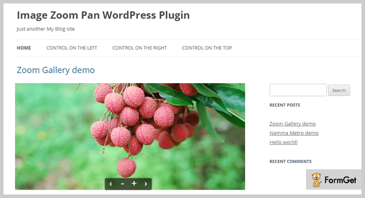 Image Zoom Pan WordPress Plugin