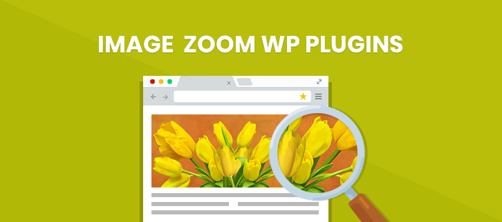 Image Zoom WordPress Plugins