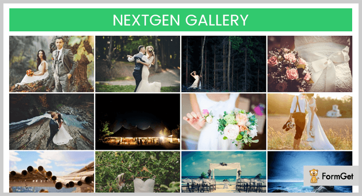NextGEN - Gallery WordPress Plugins