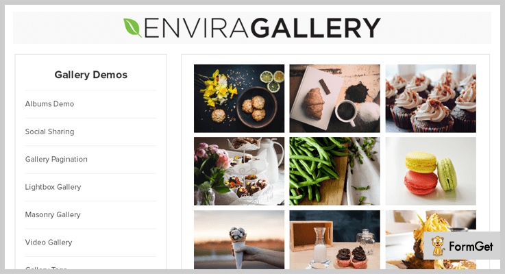 envira - Gallery WordPress Plugins