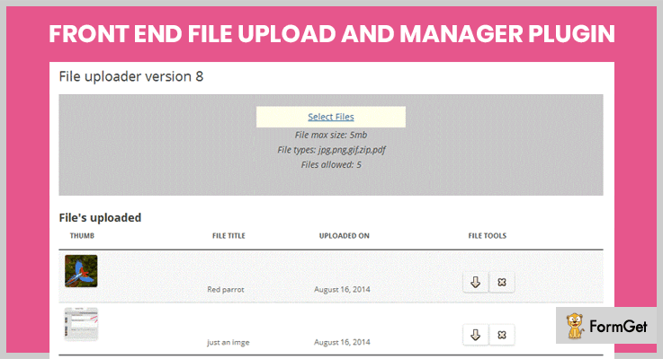 upload-file-wordpress-plugins-front-end-file-upload-and-manager-plugin