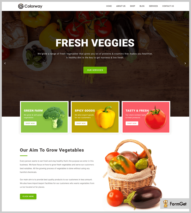 Colorway - Grocery WordPress Theme