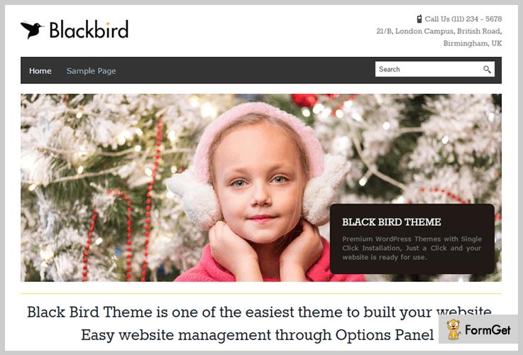 BlackBird Magazine WordPress Themes