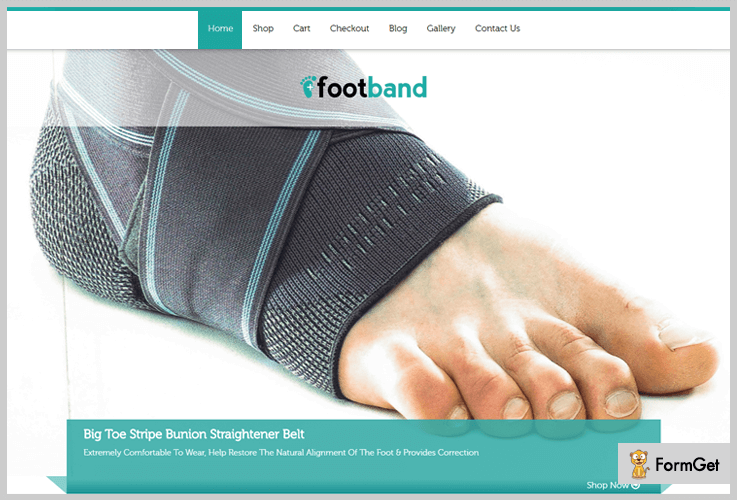 Foot Band Physiotherapy WordPress Theme