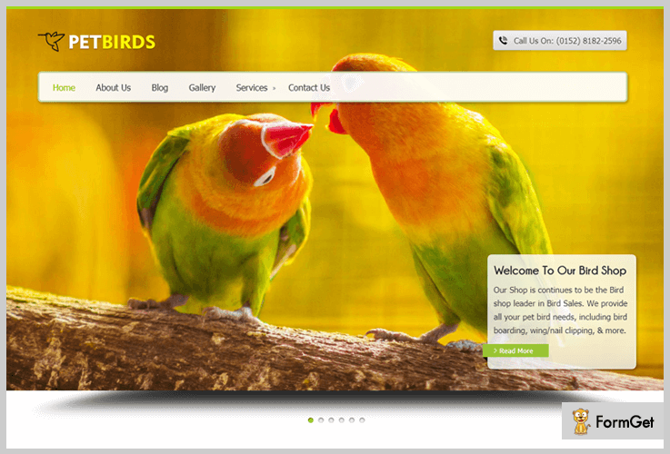 Pet Birds Pet Store WordPress Theme