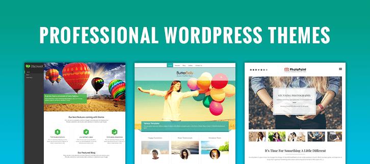 Professional WordPress Themes