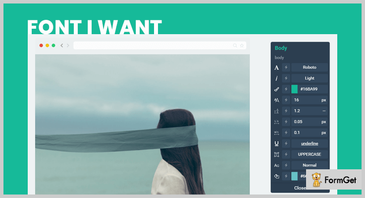 Font I Want WordPress Font Plugin