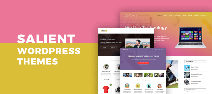 5+ Salient WordPress Themes 2018 (Free and Paid)