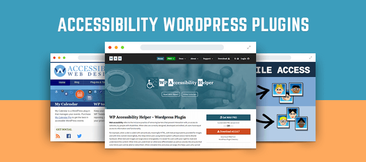 WordPress Accessibility Plugins