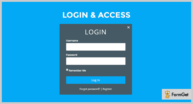 Custom Login & Access WordPress Accessibility Plugin