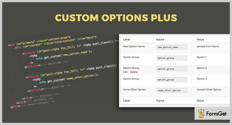 Custom Options Plus WordPress Options Plugin