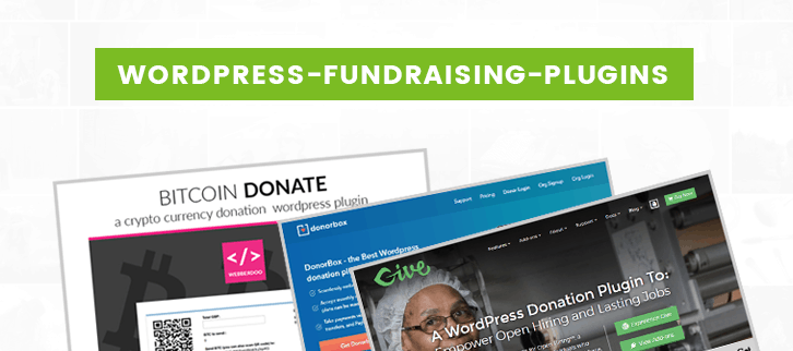 Wordpress Fundraising Plugins