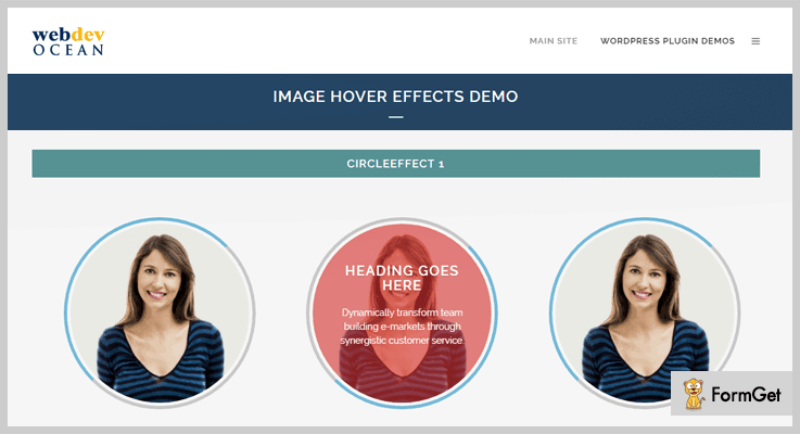 Image Hover Effects Hover Effect WordPress Plugin