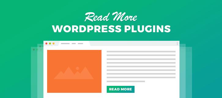 Read More WordPress Plugins