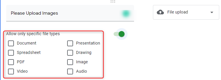 Specific File Type Option - Google Forms
