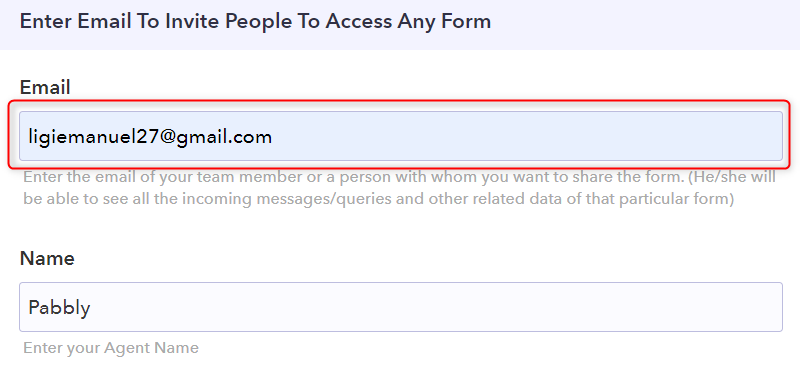 Put the Email Address Of New Team Member -Pabbly Form Builder
