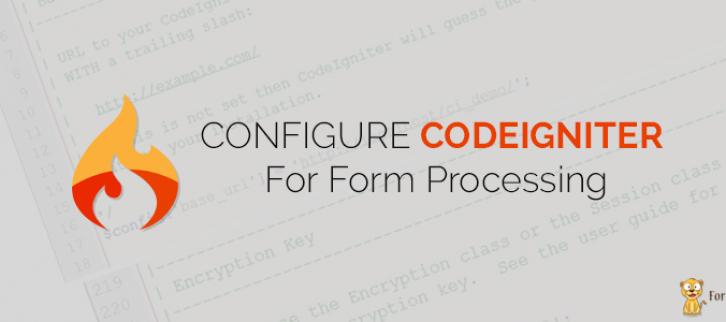CodeIgniter Input Form Setting