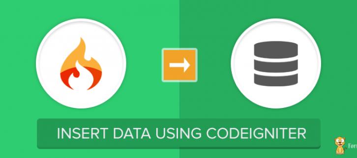 CodeIgniter Insert Data into Database